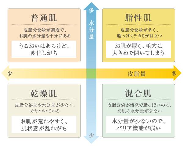 肌タイプの説明